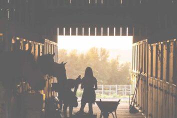 Silhouette of girl in barn